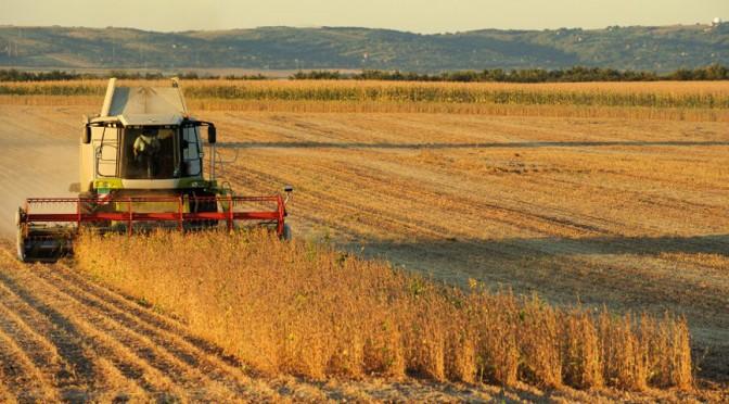 ¿Hacia dónde van los precios internacionales de las principales commodities agrícolas?