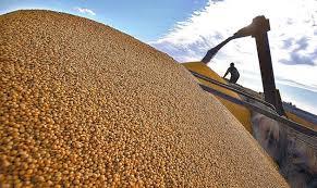 La guerra comercial entre China y Estados Unidos llega al mercado de la soja